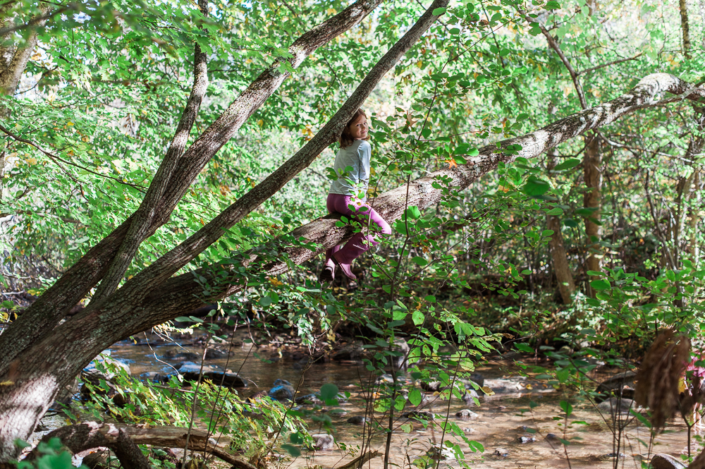 raising-wildlings-nature-program-shade-mills-23